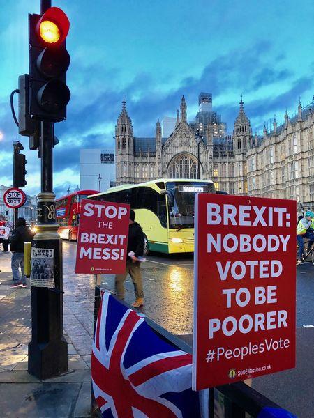 写真・図版 : 議事堂前の残留派のプラカード。「ブレグジットのめちゃくちゃを止めろ」(左)、「ブレグジット―貧しくなりたくて投票した人はいない」(右)(3月12日、筆者撮影)