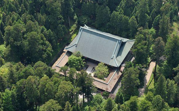 森林大国・日本