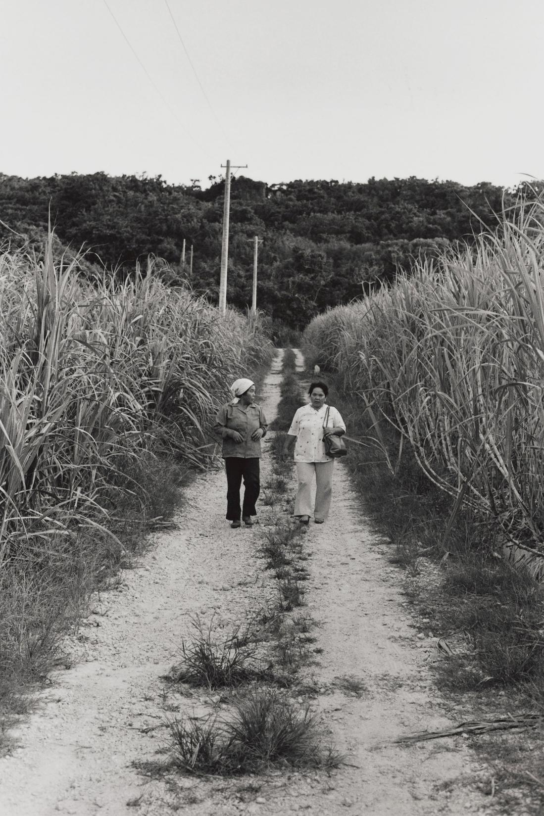写真・図版 : 過酷な沖縄戦を体験した仲間ナツ(左)と古堅キヨ子=1928年生=(沖縄本島、1982年)©Yoshino Oishi