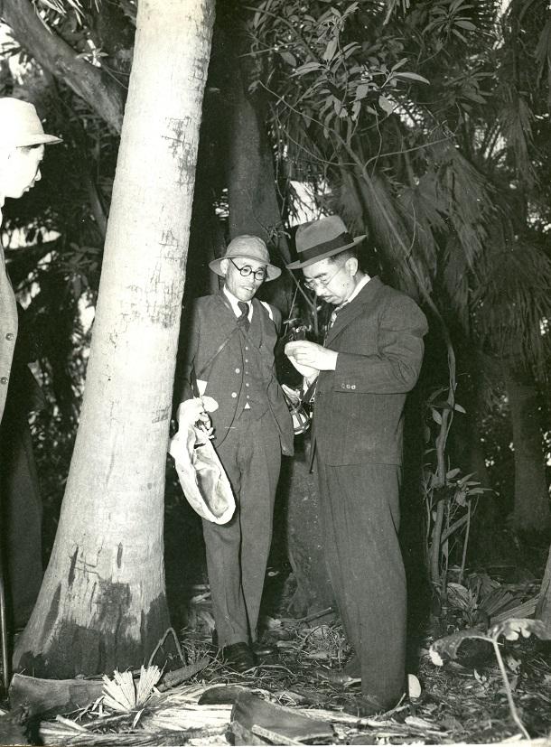 青島のジャングルで昆虫を採集する昭和天皇 19496