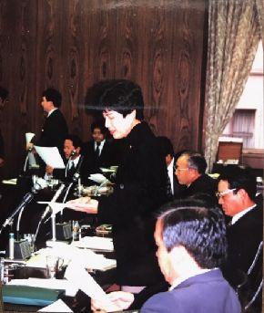 参議院地方行政委員会で年齢制限について質問する円より子さん=1993年11月2日