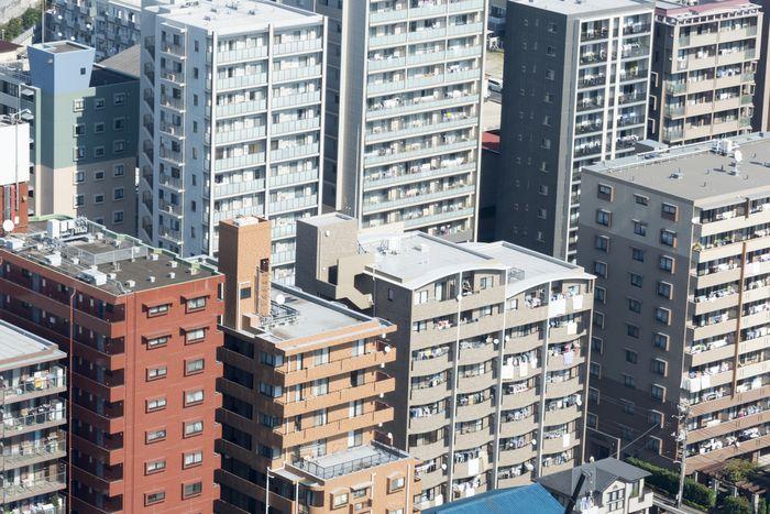 写真・図版 : shigemi okano/shutterstock.com