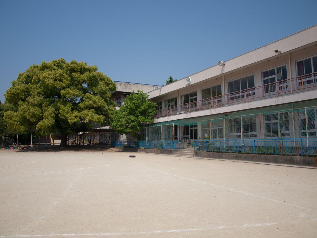 写真・図版 : Kojiro/shutterstock.com