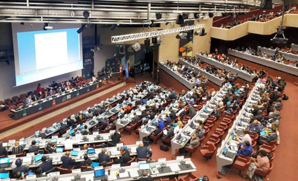 写真・図版 : 汚れた廃プラスチックの輸出入規制について議論されたバーゼル条約締約国会議=2018年5月、スイス・ジュネーブ、環境省提供