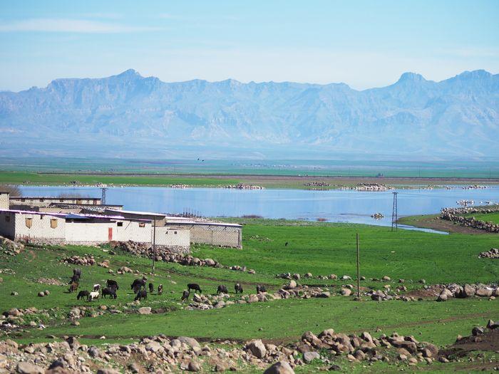 写真・図版 : ハサカ県北部、トルコとの国境。雄大な自然が広がる、豊かな大地