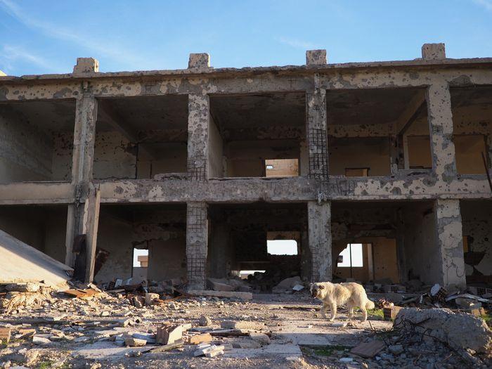 写真・図版 : 戦闘の爪痕が残る、ハサカ県南部の街