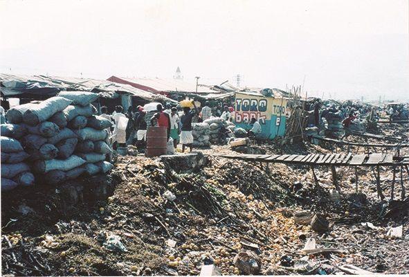 写真・図版 : 1994年11月 民主政権復帰直後のハイチ。経済制裁のため地下資源のないハイチでは生活燃料を木炭に頼り森林伐採が進んだ。国土のうち森林の占める割合は3%しかない。日本は約7割=ハイチ友の会提供