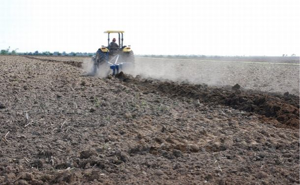 耕さない農業が地球温暖化を抑制する