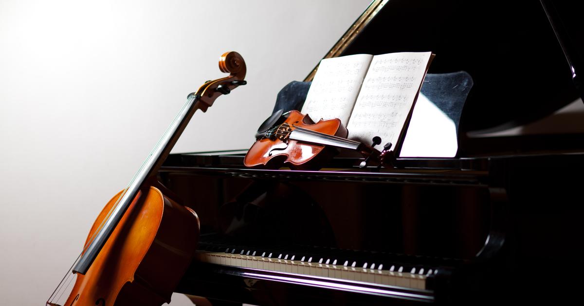 写真・図版 : Minerva Studio/shutterstock.com