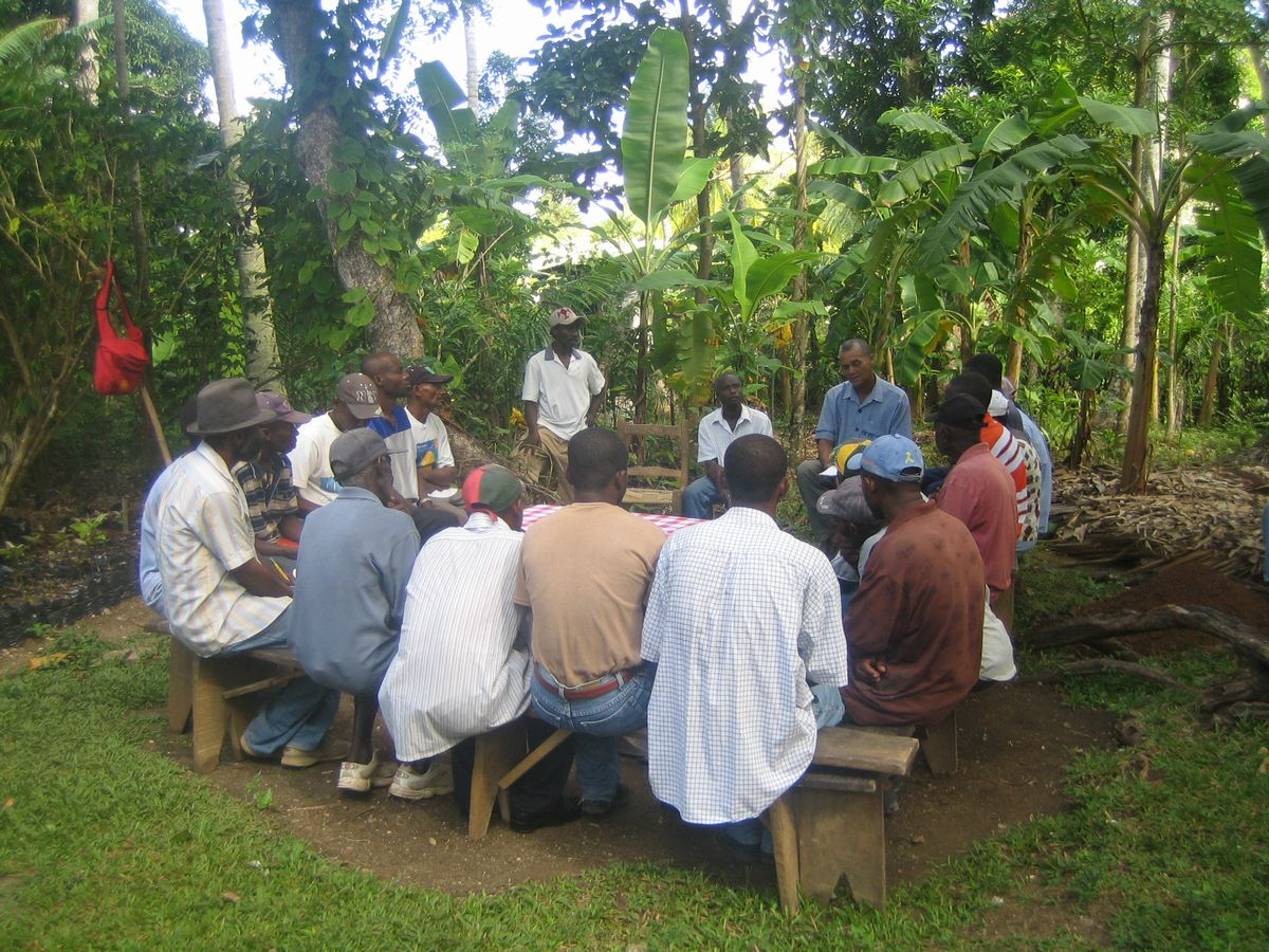 写真・図版 : 2007年、南西県チビー村の農民に接ぎ木についてレクチャーするGEDDHのメンバー=小澤幸子さん提供