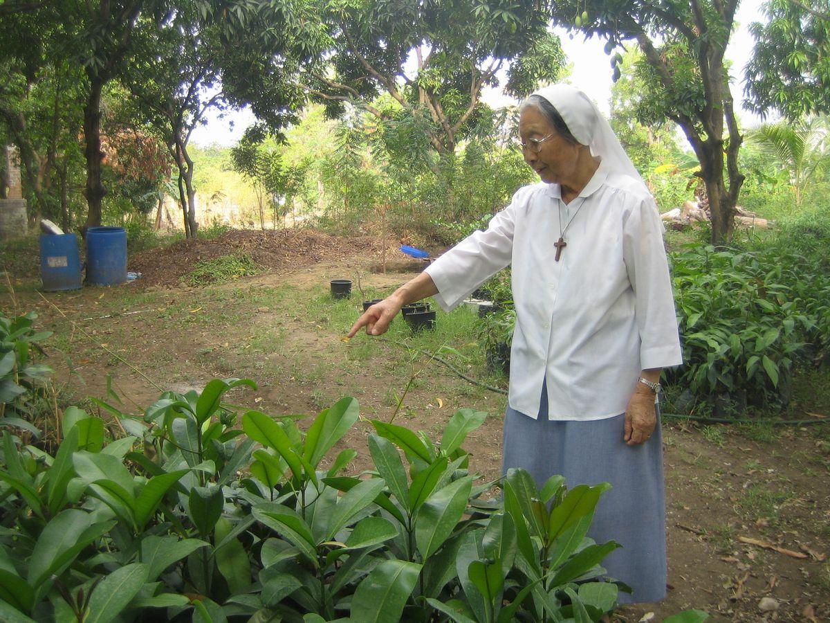 写真・図版 : 2006年、レオガン市近郊の修道会の庭で、有機農法で苗木を育てるシスター須藤=小澤幸子さん提供