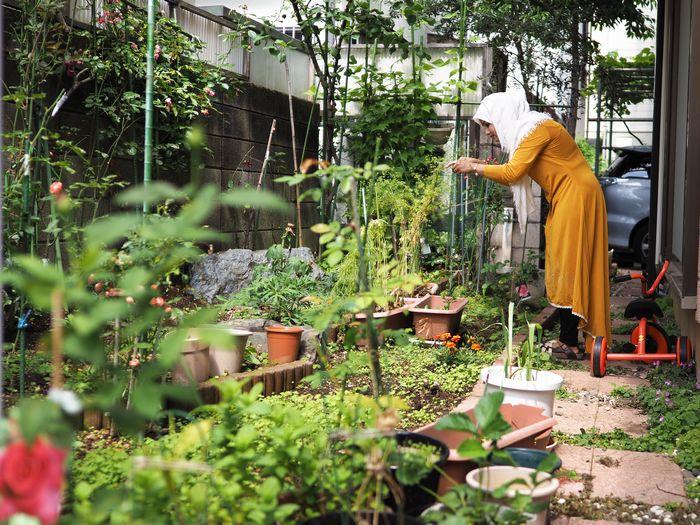 写真・図版 : キッチンの裏手は、手入れの行き届いた庭が広がっていた