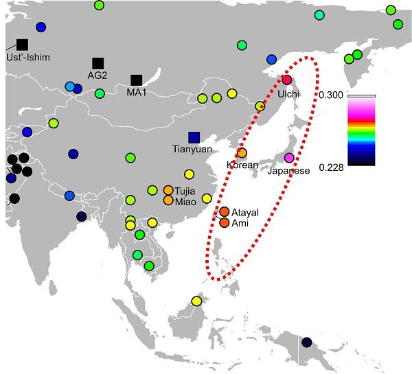 写真・図版 : 縄文人と大陸沿岸部の人々が遺伝的に近いことを示す解析結果。論文に掲載された=国立科学博物館提供