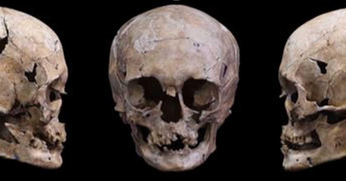 写真・図版 : DNAの保存状態が良かった船泊遺跡の23号人骨の頭骨。正面と両側面からの写真を並べた=国立科学博物館提供