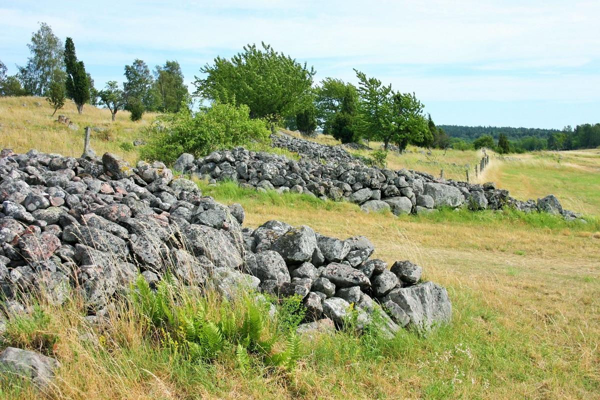 写真・図版 : バイキングの遺跡が残るスウェーデンのビルカ島=筆者撮影