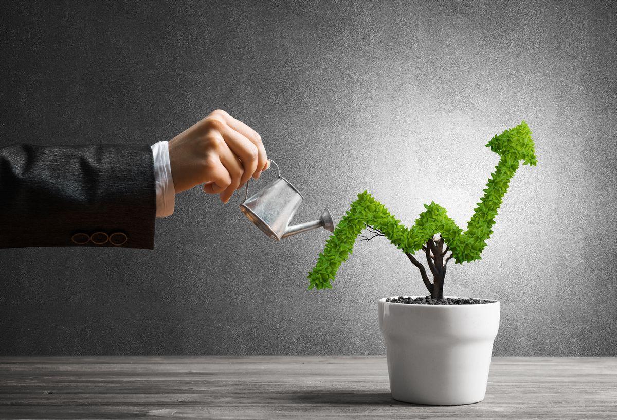 写真・図版 : Khakimullin Aleksandr/Shutterstock.com