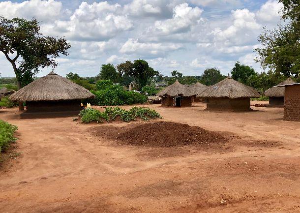 写真・図版 : ビディビディ難民居住区では、世帯ごとに住居が与えられている。住居の前には、自給用の農地もある。