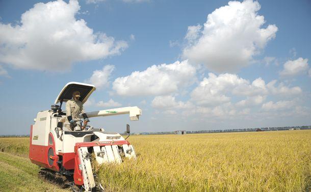 写真・図版 : あきたこまちを収穫する農家=2014年9月29日、秋田県大潟村