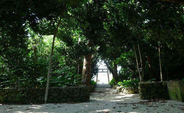 写真・図版 : 小さな離島には、80を超える神様を祀る場所があり、島民はそこを通る時に挨拶をする=南雲さん提供
