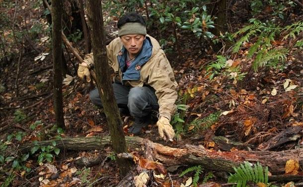 写真・図版 : けもの道でイノシシの通った跡を示す筆者。倒木の表面が削れている