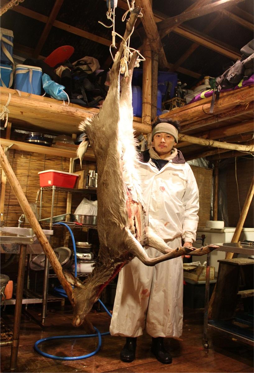 写真・図版 : 仕留めたシカを解体小屋で吊るす。ハラ(内臓)は出してあり、これから解体にかかる