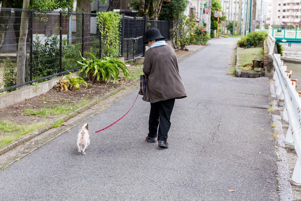 ペットと高齢者