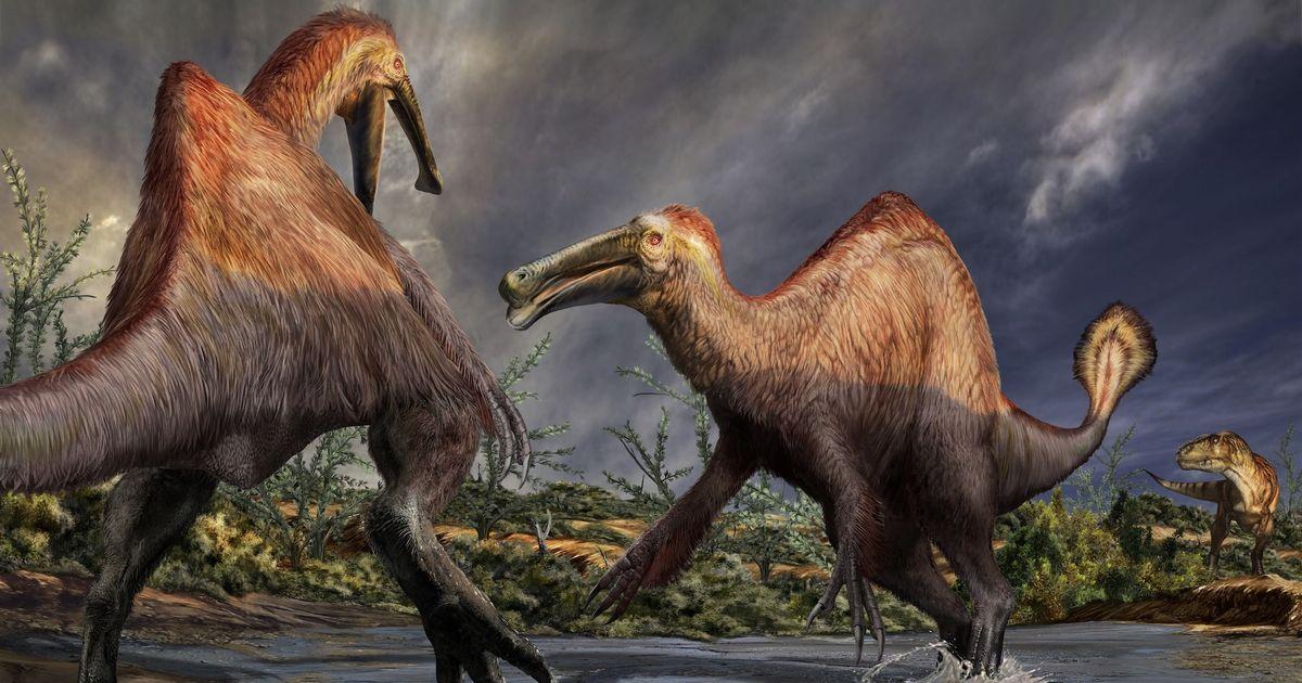 写真・図版 : デイノケイルスの復元画。水辺にいる2頭に肉食恐竜のタルボサウルス(右奥)が近付いている ©Davide Bonadonna