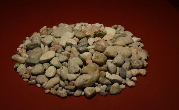 写真・図版 : デイノケイルスおなかに入っていた胃石=国立科学博物館、筆者撮影