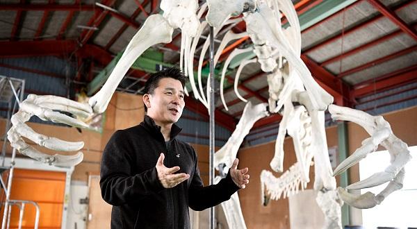 写真・図版 : 製作されたデイノケイルスの全身復元骨格の前で話す小林快次教授=白井伸洋撮影