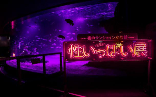 写真・図版 : 会場内のあちこちに、歓楽街を思わせるネオンサインが置かれている=サンシャイン水族館提供