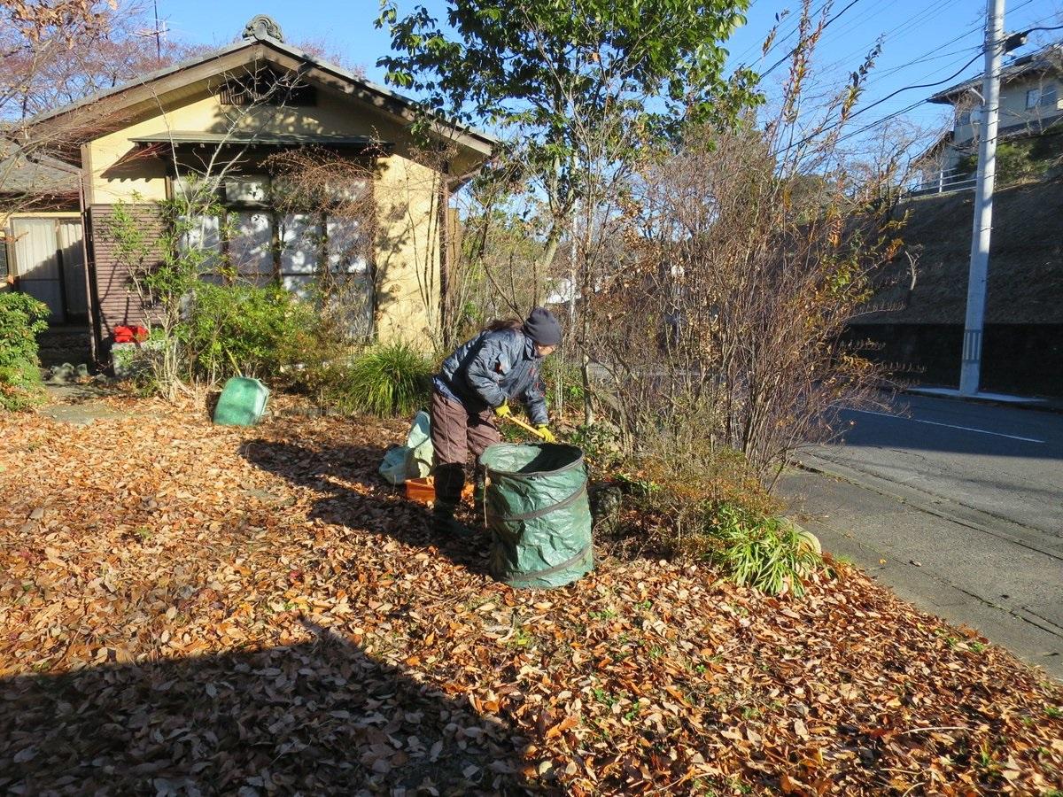 強風の中、落葉清掃。2018年12月