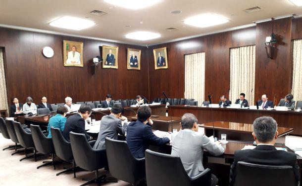 写真・図版 : 2019年11月28日の参院法務委員会(筆者撮影)