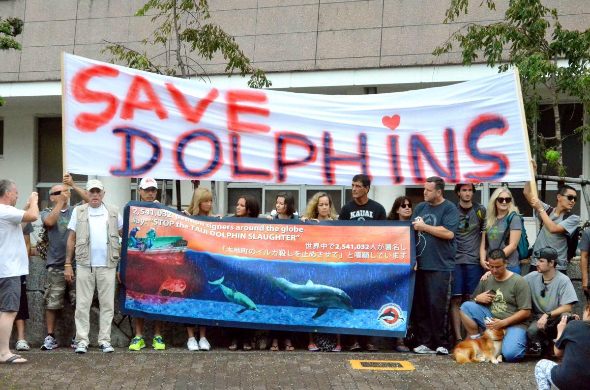 写真・図版 : 「イルカを救え」と書いた横断幕を広げる反捕鯨団体のメンバーら=2014年9月、和歌山県太地町役場前