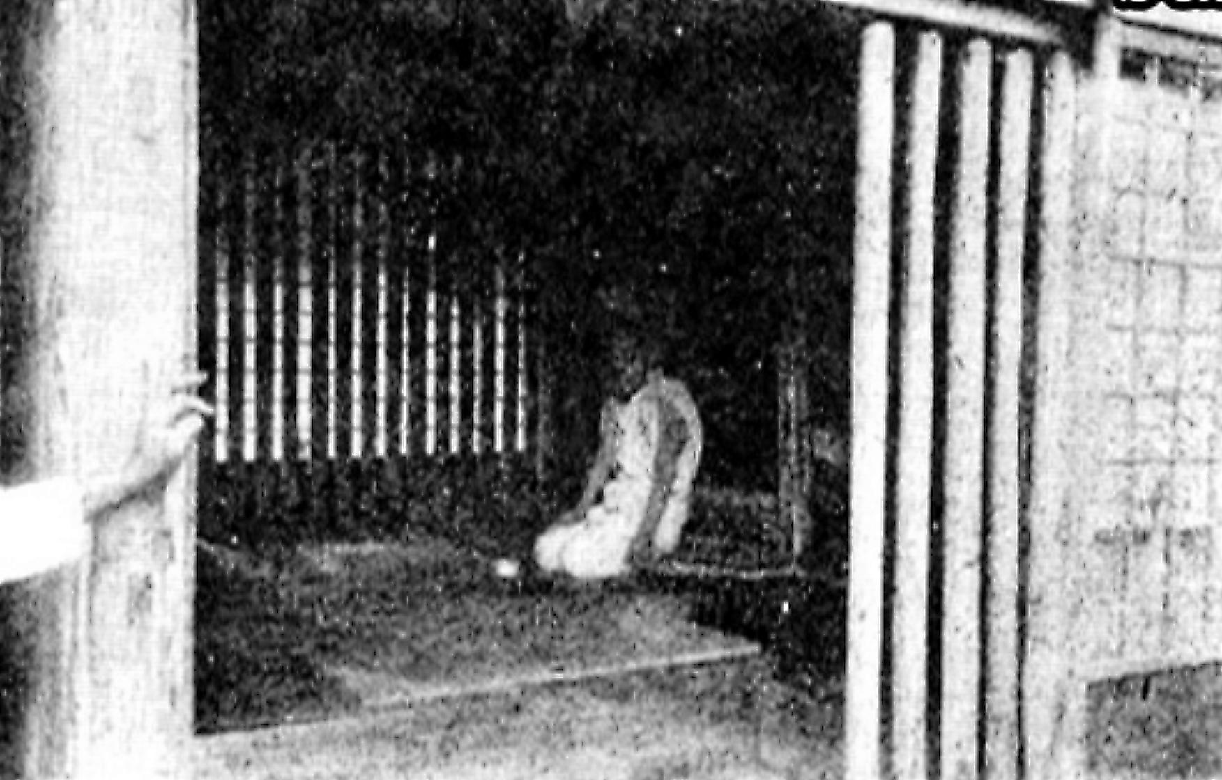 写真・図版 : 精神障害者を「座敷牢」に入れていた1910年代の私宅監置の様子。若い男性が数年来、格子付きの一室に閉じ込められていた=映画「夜明け前」から