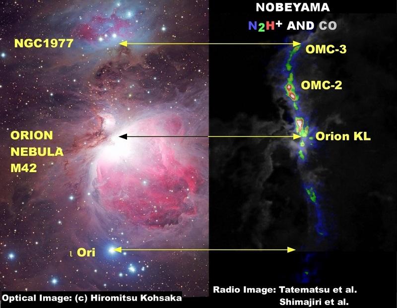 写真・図版 : 可視光と電波で見たオリオン座大星雲付近。左は上坂浩光氏による可視光写真。右は同じ領域を野辺山45m電波望遠鏡で観測した電波写真(立松健一ほか;島尻芳人ほかの写真を合成)