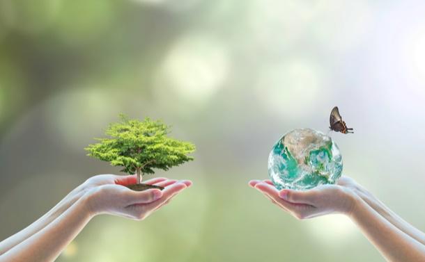 気候変動対策は生物多様性を損なわないか