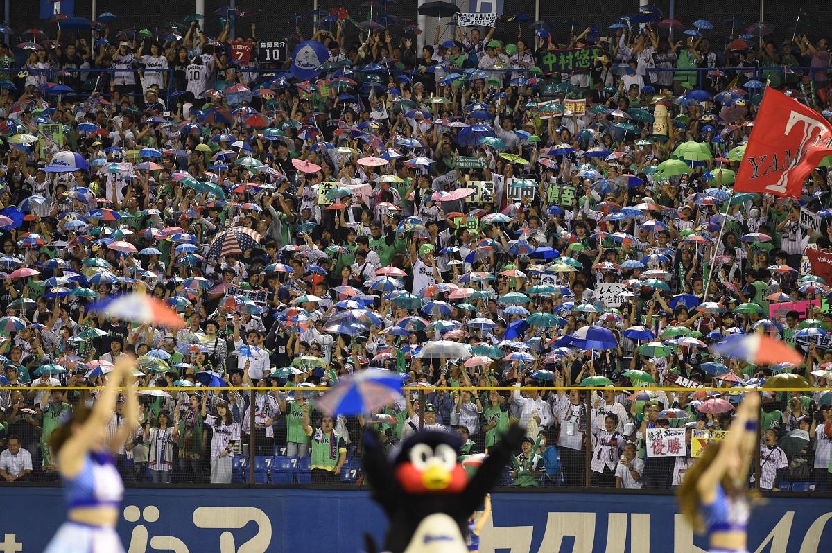 写真・図版 : 神宮球場右翼席のヤクルトファンは、雨傘をさしながら「東京音頭」を熱唱する