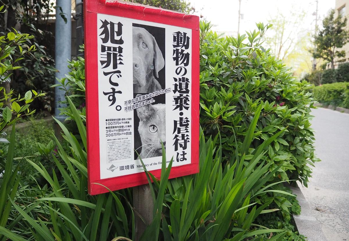 公園に設置された看板に貼られたポスター。環境省の「不幸な命を産み出さないために不妊去勢しましょう」というメッセージが添えられている=2019年4月19日、大阪市内