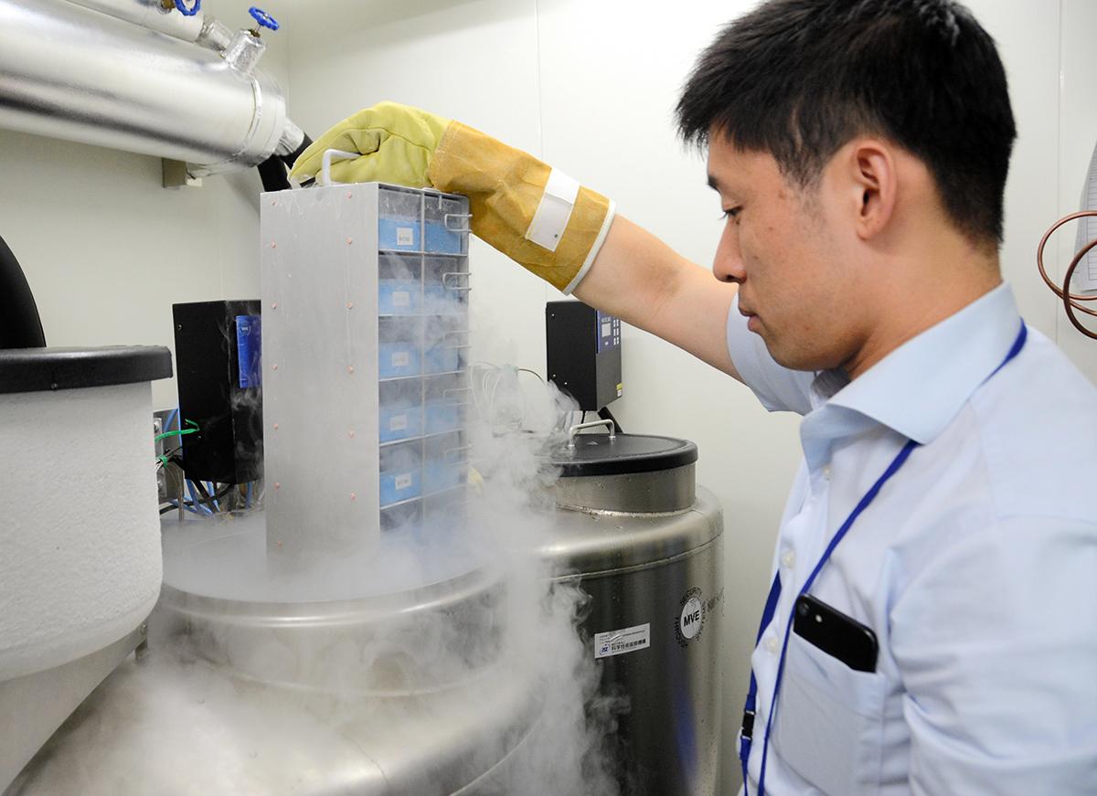 写真・図版 : iPS細胞を冷凍保管する施設=2019年7月2日、東京都新宿区の「ハートシード」