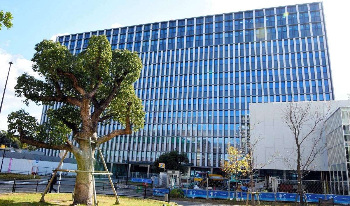 福岡高裁・地裁・家裁・簡裁が入る庁舎=福岡市中央区