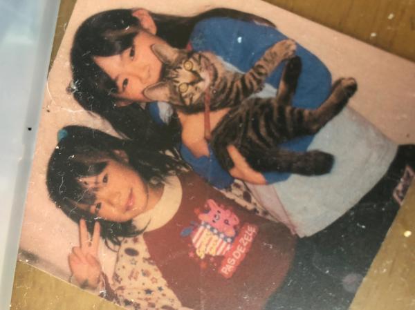 愛猫を迎えてまもないころ(左が著者)