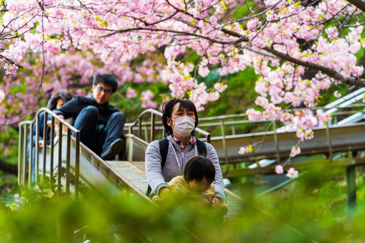 写真・図版 : 住田さんは公演や自然の中で時々遊ぶことも必要だという(本文の学校とは関係ありません) Mike Towers/Shutterstock.com