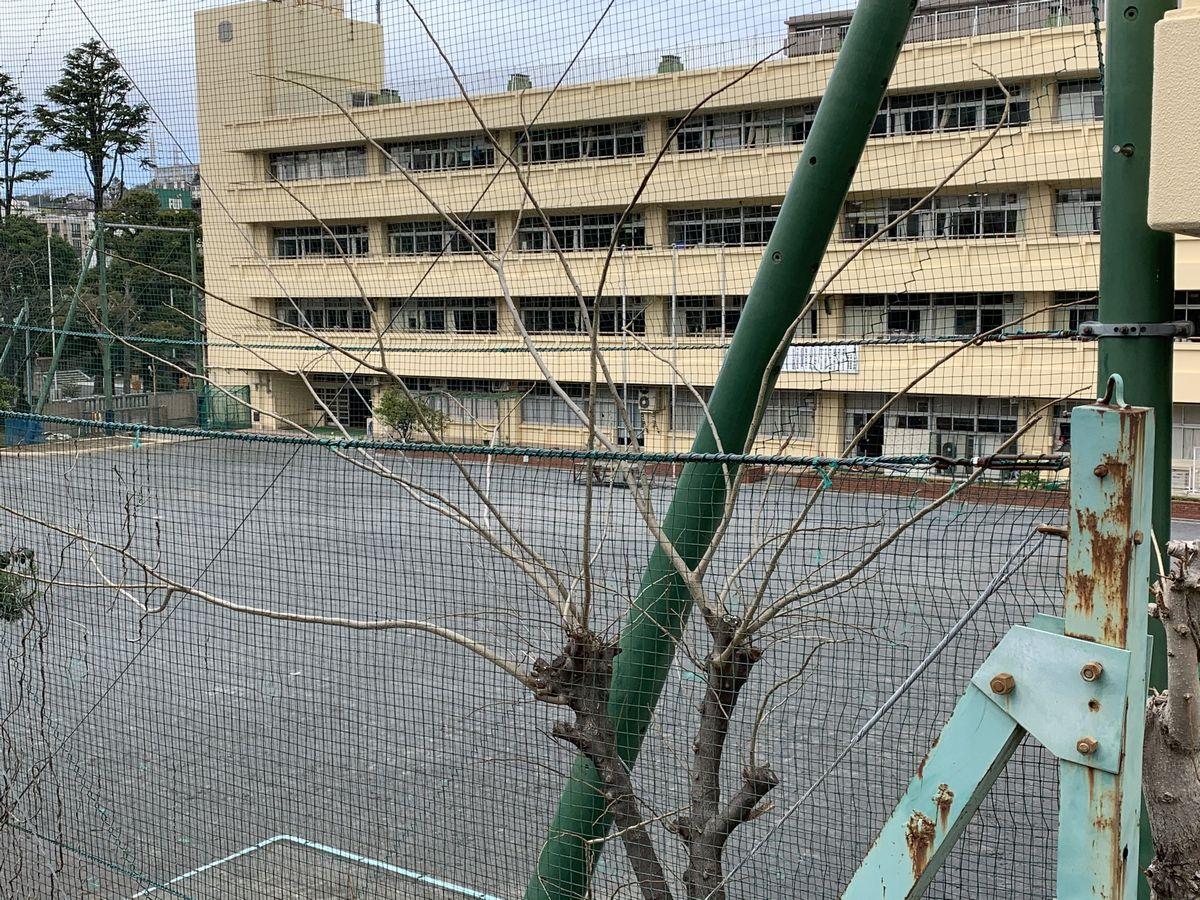 写真・図版 : この校庭に子どもたちの声が戻ってくるのはいつの日か=岩崎撮影