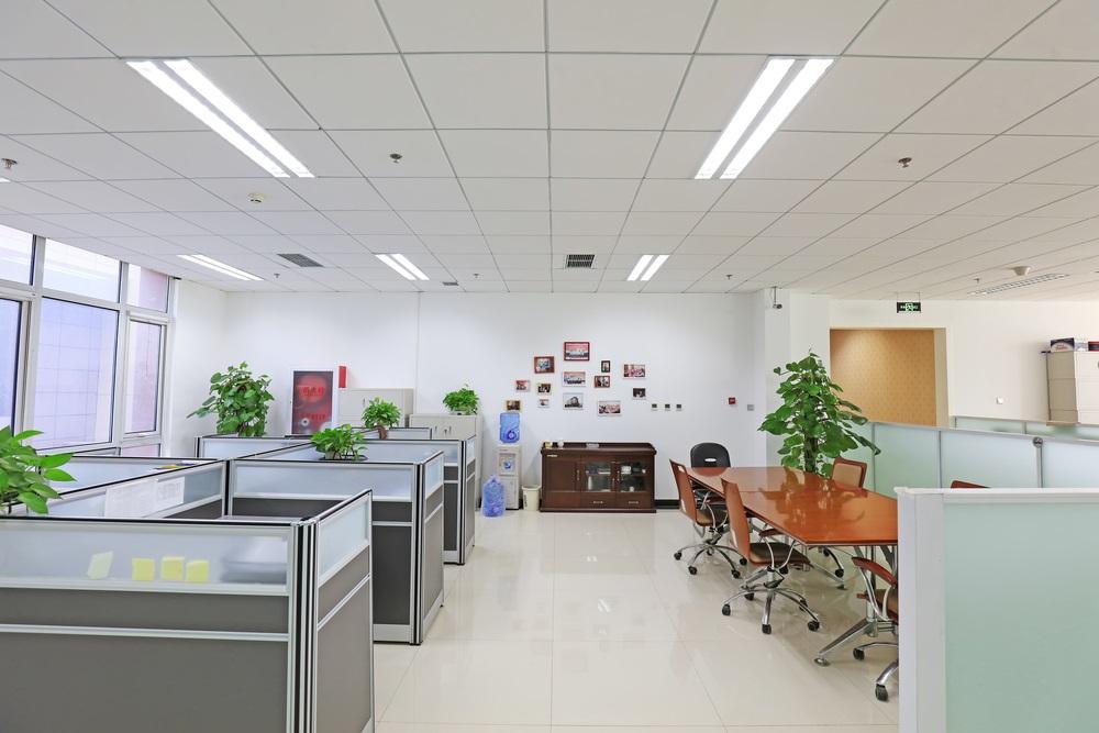 写真・図版 : junrong / Shutterstock.com