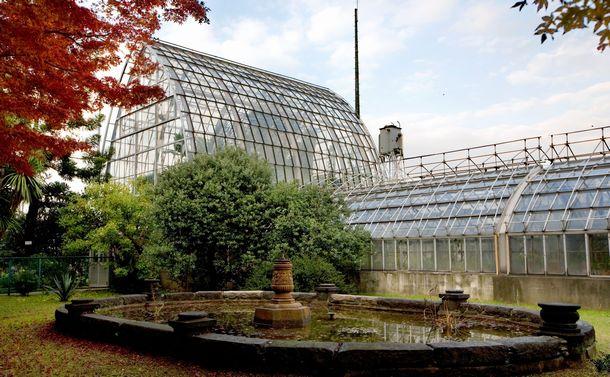 写真・図版 : 耐震性などの問題から、建て替えられる前の旧温室=2007年12月、内藤久雄撮影