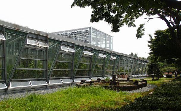 日本最古の小石川植物園に登場した新温室