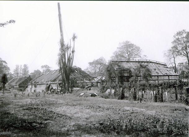写真・図版 : 空襲によって損壊した温室=東京大学総合研究博物館所蔵