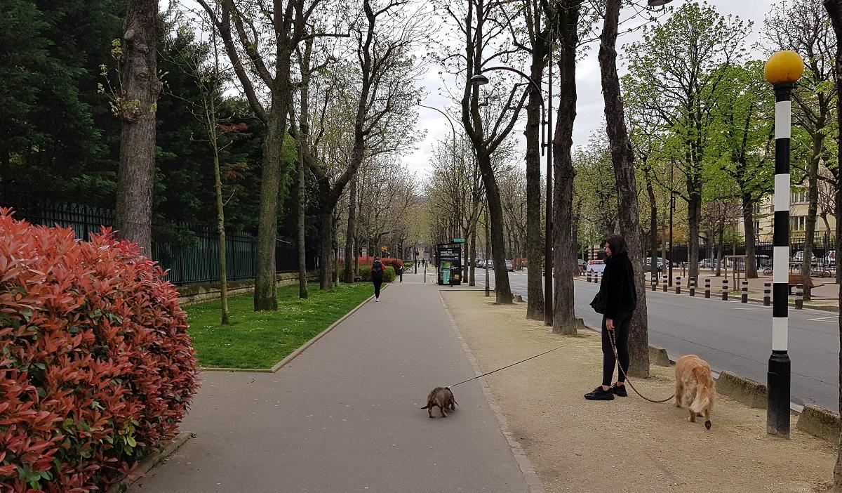写真・図版 : パリ周辺の街は閑散としている=2020年3月19日