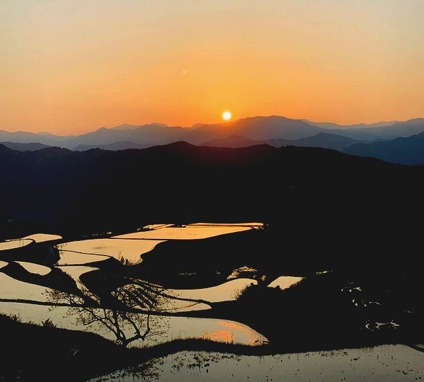 写真・図版 : 土佐町の棚田に沈む夕日(筆者撮影)