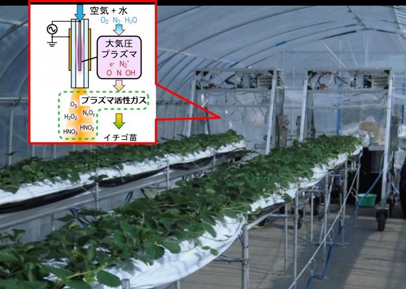 写真・図版 : 宮城県山元町で実験中の自走式プラズマ噴霧システム。挿入図は大気圧空気プラズマ装置の模式図。